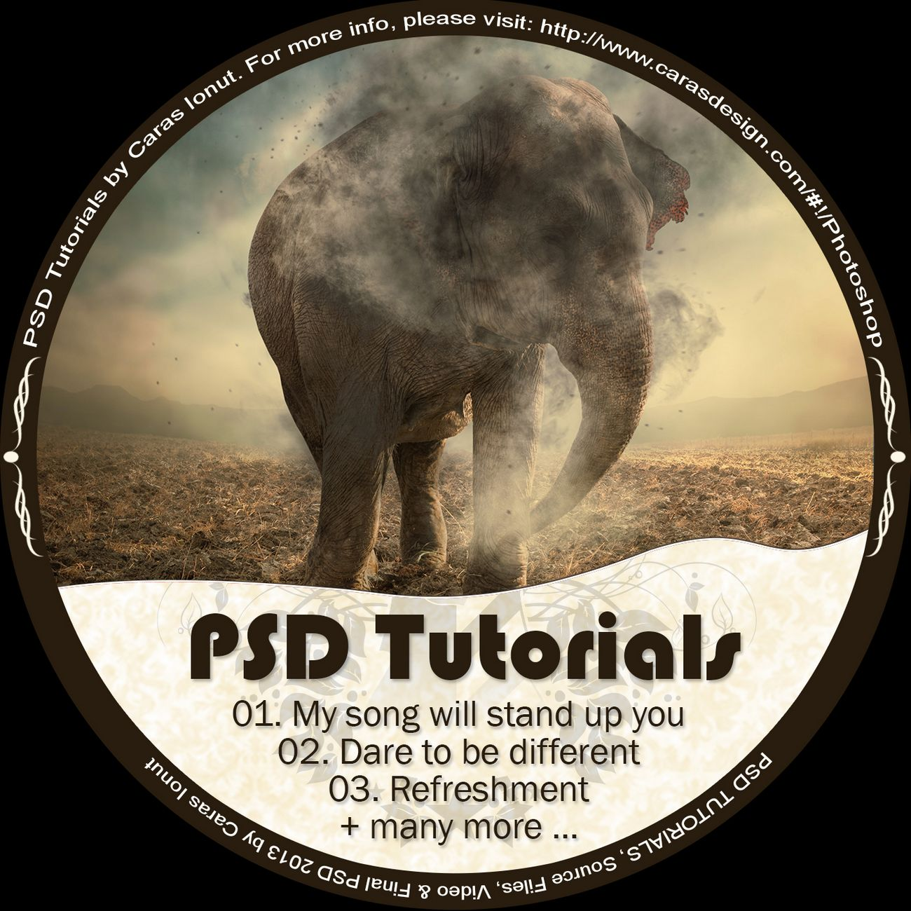 Perfect Gift on Personalized DVD. You can add up to 10 Tutorials from the PSD Tutorial & Special Tutorial list and I will burn them to a DVD, with printed DVD and cover. The shipping cost is 10 Euro's worldwide, by airmail. The shipping time is around 7 up to 14 working day's.